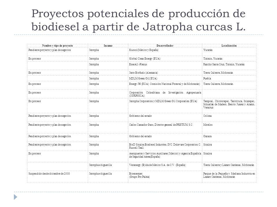 Nombre y tipo de proyecto