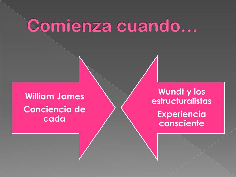 Experiencia consciente Wundt y los estructuralistas