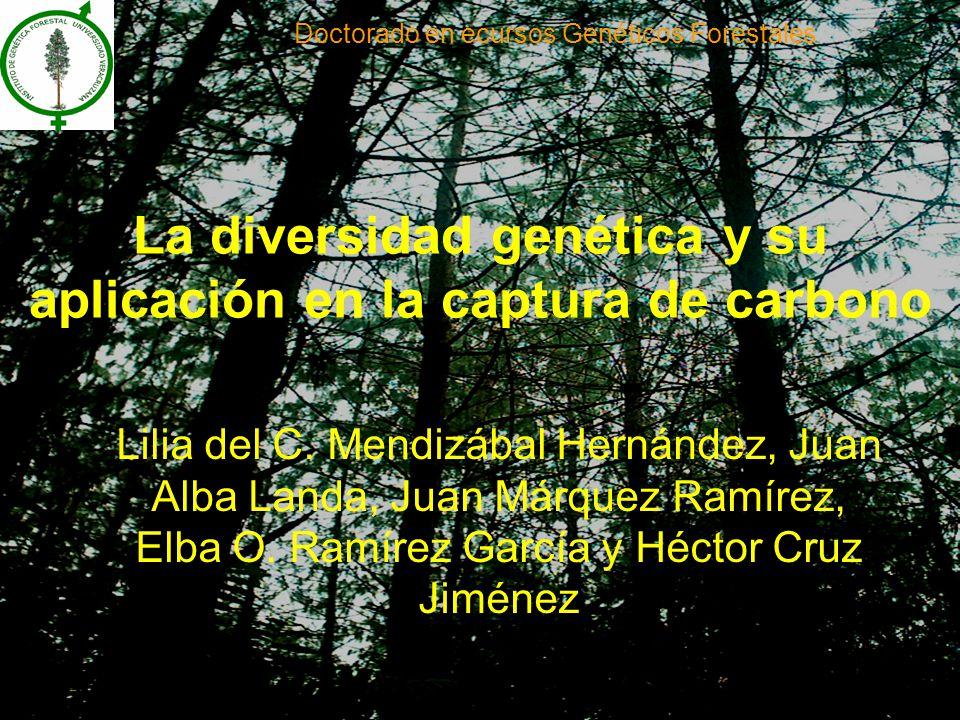 La diversidad genética y su aplicación en la captura de carbono