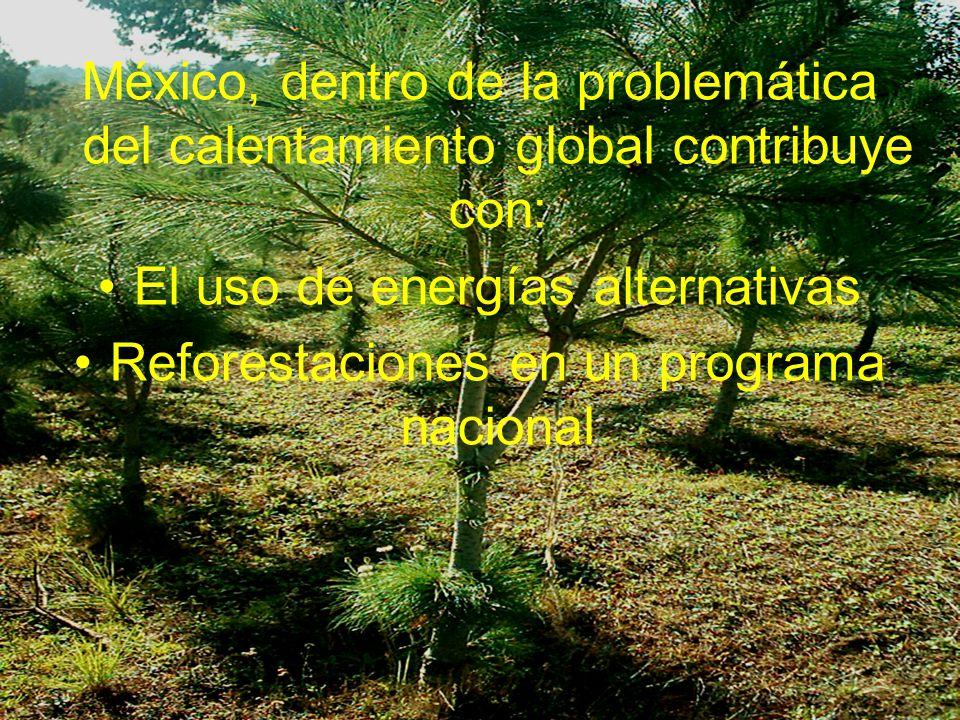 Movimiento de especies forestales en el estado de Veracruz, México
