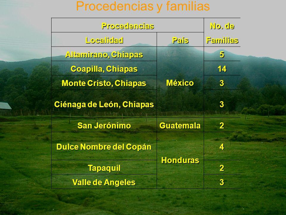 Ciénaga de León, Chiapas