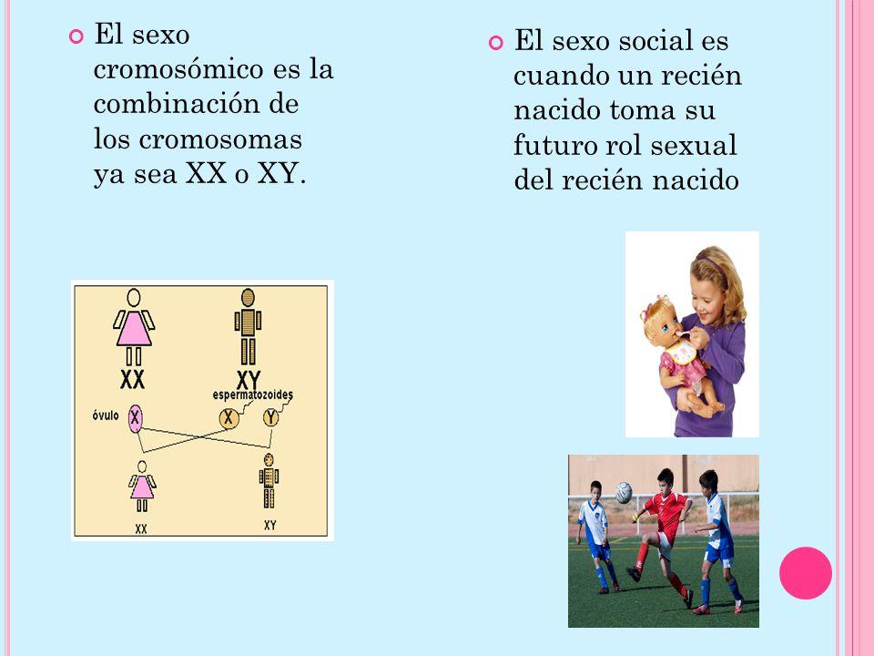 El sexo cromosómico es la combinación de los cromosomas ya sea XX o XY.