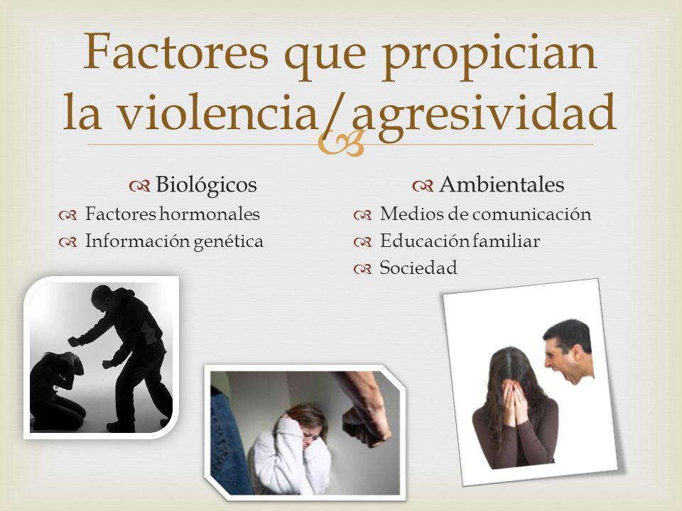 Factores que propician la violencia/agresividad