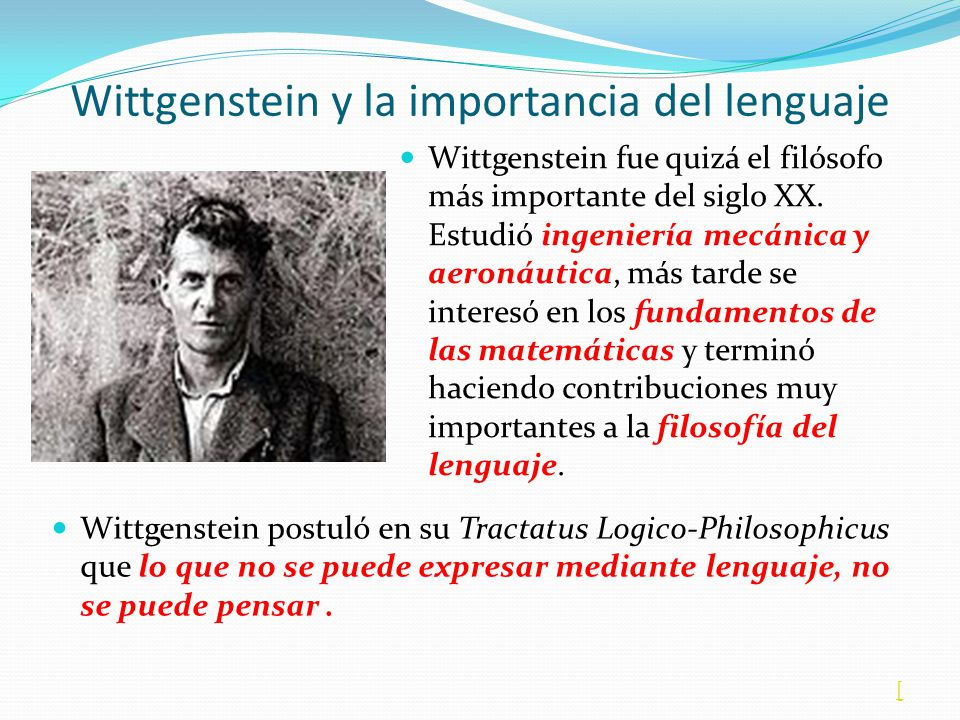 Wittgenstein y la importancia del lenguaje