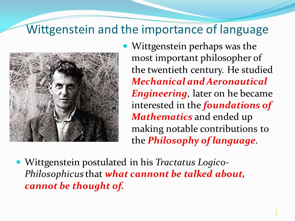 Wittgenstein and the importance of language