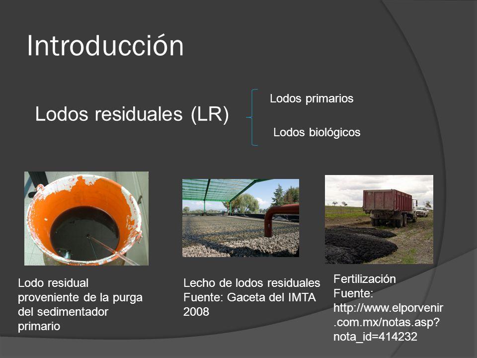 Introducción Lodos residuales (LR) Lodos primarios Lodos biológicos