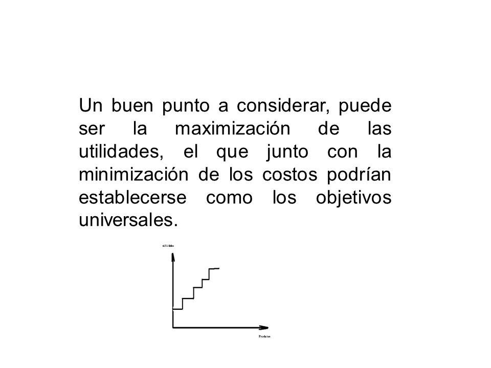 Un buen punto a considerar, puede ser la maximización de las utilidades, el que junto con la minimización de los costos podrían establecerse como los objetivos universales.
