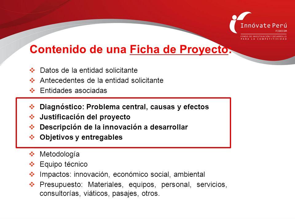 Contenido de una Ficha de Proyecto:
