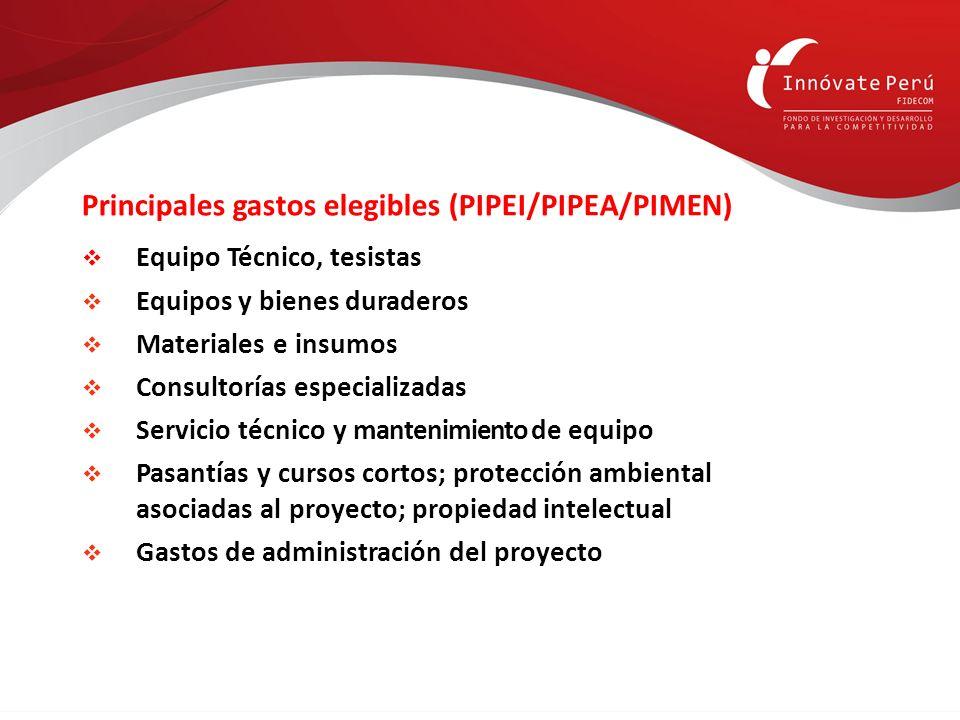 Principales gastos elegibles (PIPEI/PIPEA/PIMEN)