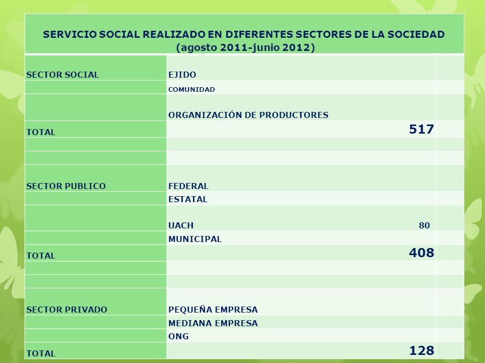 SERVICIO SOCIAL REALIZADO EN DIFERENTES SECTORES DE LA SOCIEDAD