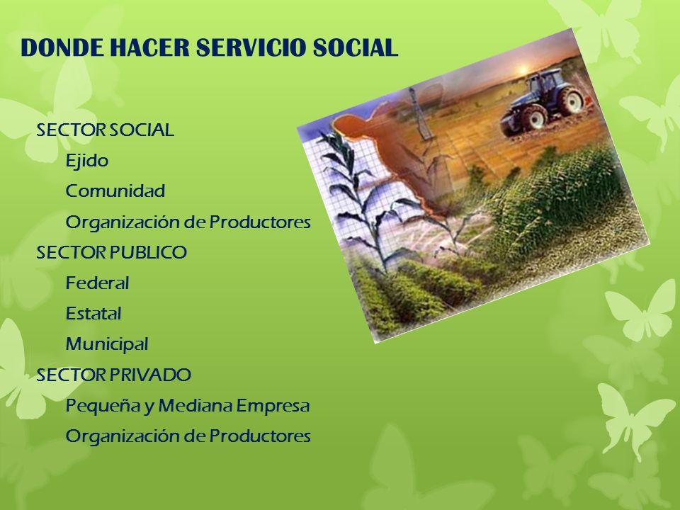DONDE HACER SERVICIO SOCIAL