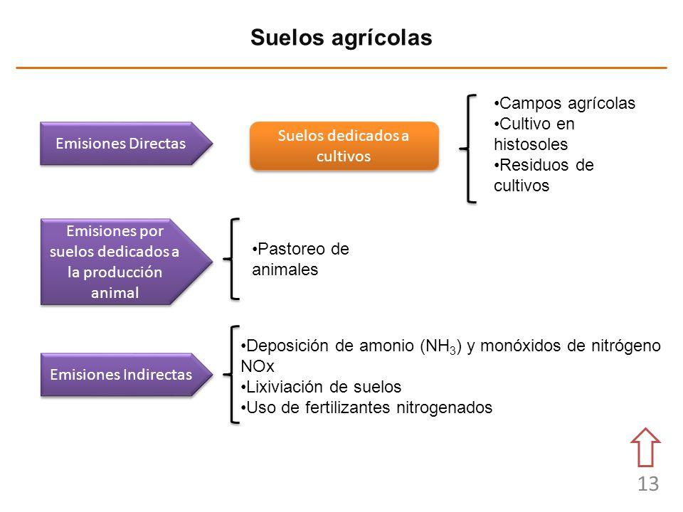 Suelos agrícolas Campos agrícolas Cultivo en histosoles