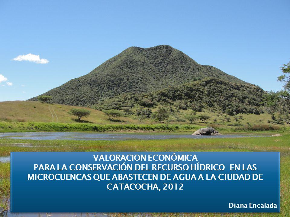 VALORACION ECONÓMICA PARA LA CONSERVACIÓN DEL RECURSO HÍDRICO EN LAS MICROCUENCAS QUE ABASTECEN DE AGUA A LA CIUDAD DE CATACOCHA, 2012.
