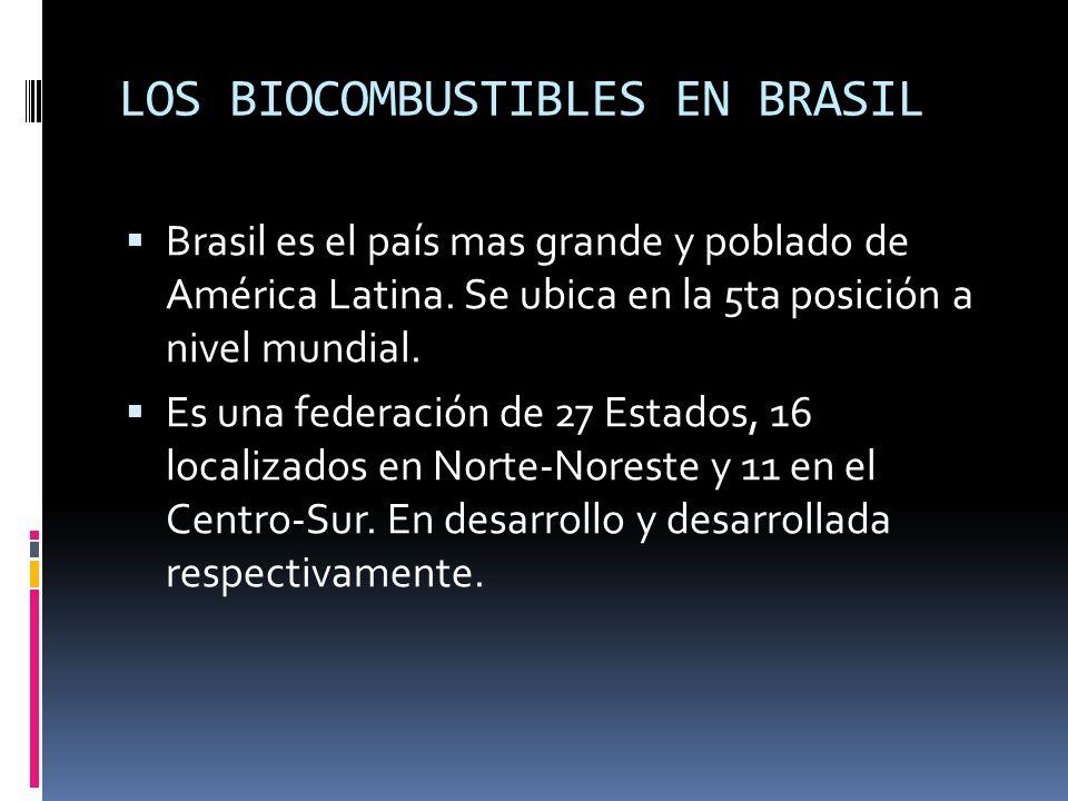 LOS BIOCOMBUSTIBLES EN BRASIL