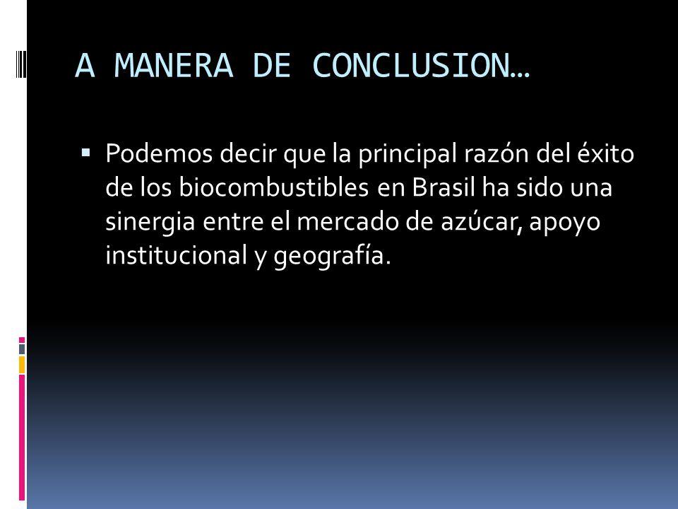 A MANERA DE CONCLUSION…
