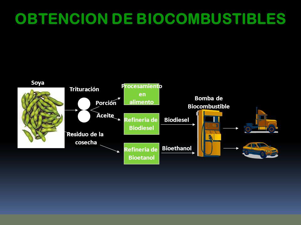OBTENCION DE BIOCOMBUSTIBLES