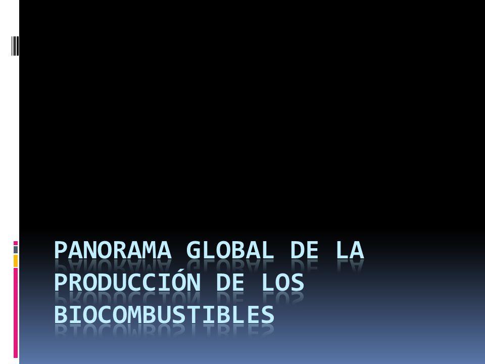 PANORAMA GLOBAL DE LA PRODUCCIÓN DE LOS BIOCOMBUSTIBLES
