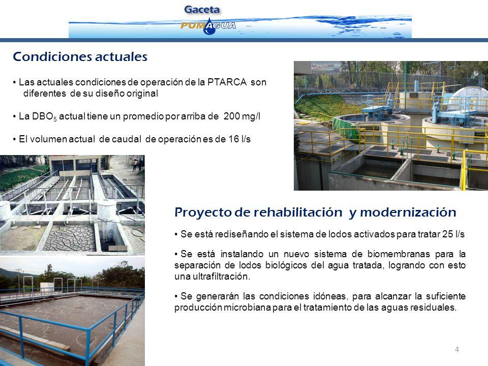Proyecto de rehabilitación y modernización