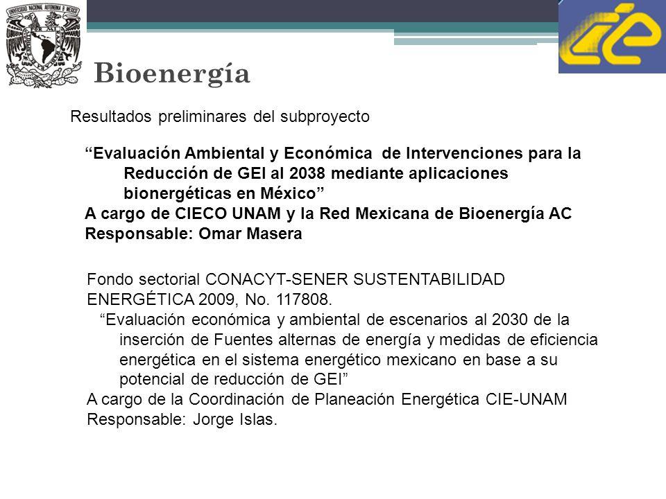 Bioenergía Resultados preliminares del subproyecto