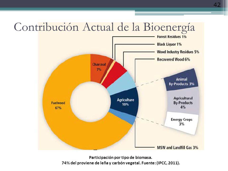 Contribución Actual de la Bioenergía