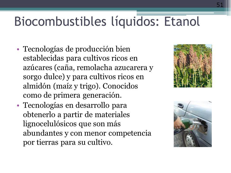 Biocombustibles líquidos: Etanol