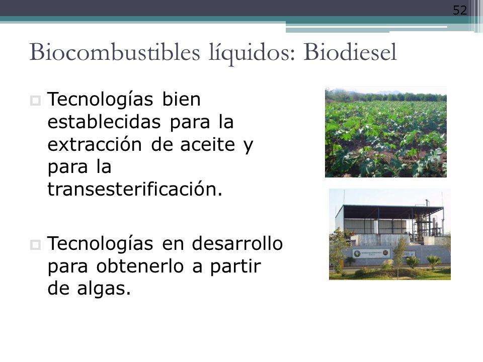 Biocombustibles líquidos: Biodiesel