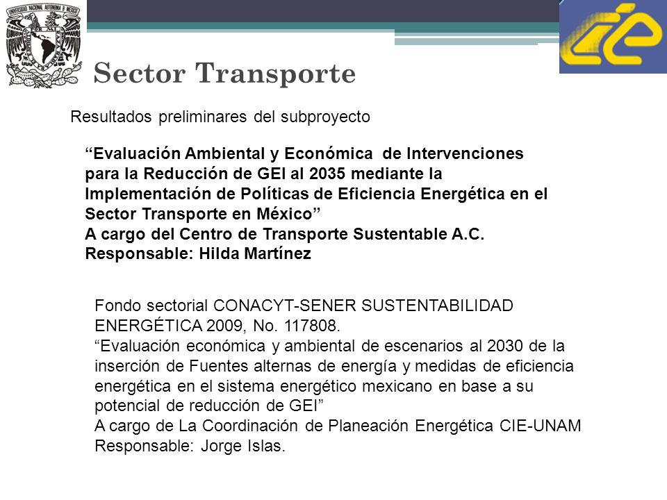 Sector Transporte Resultados preliminares del subproyecto