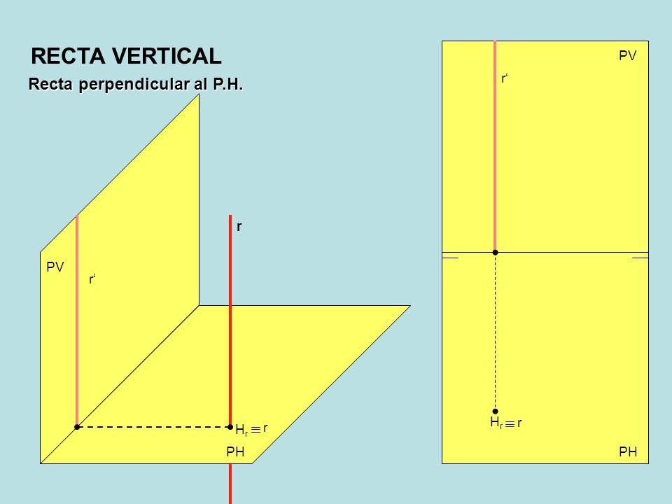 RECTA VERTICAL Recta perpendicular al P.H. PV r' r PV r' Hr r Hr r PH