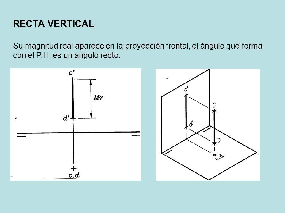 RECTA VERTICAL Su magnitud real aparece en la proyección frontal, el ángulo que forma con el P.H.