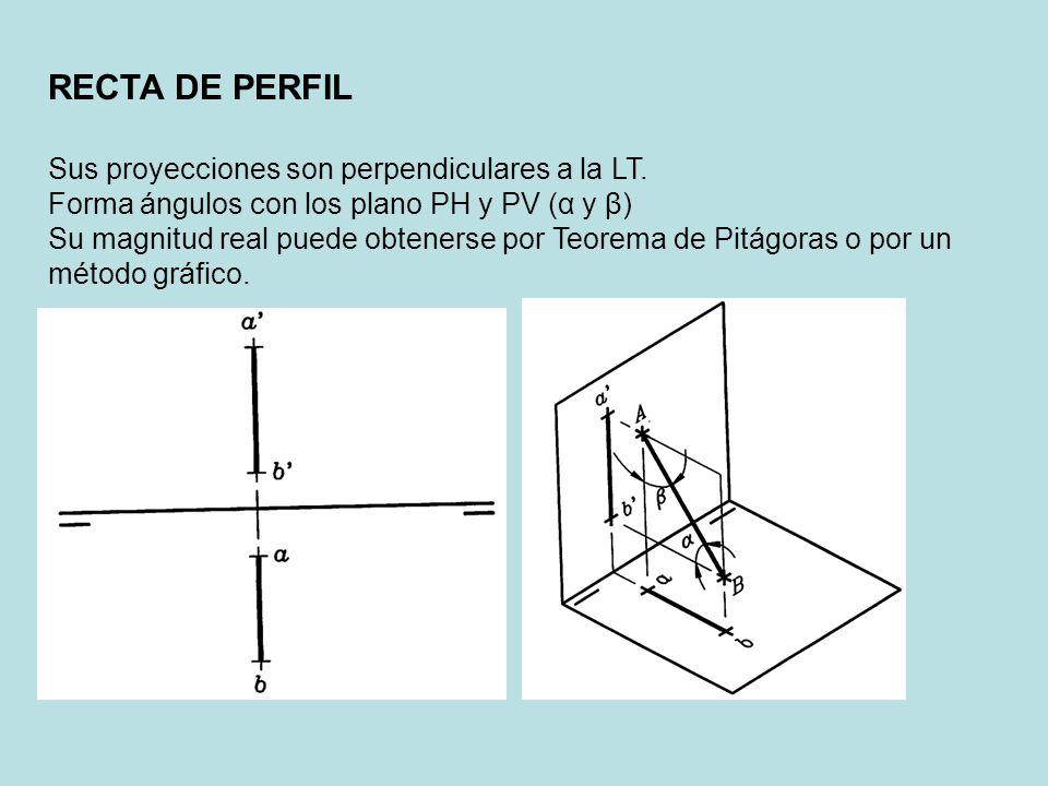 RECTA DE PERFIL Sus proyecciones son perpendiculares a la LT.