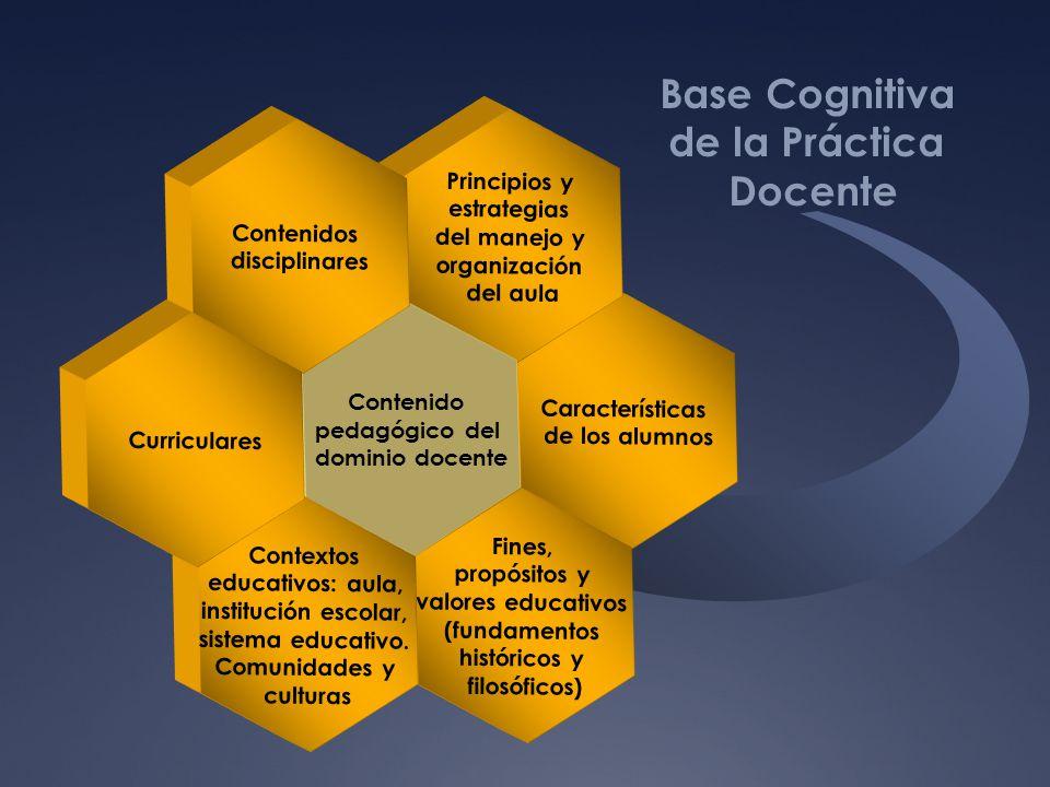 Base Cognitiva de la Práctica Docente
