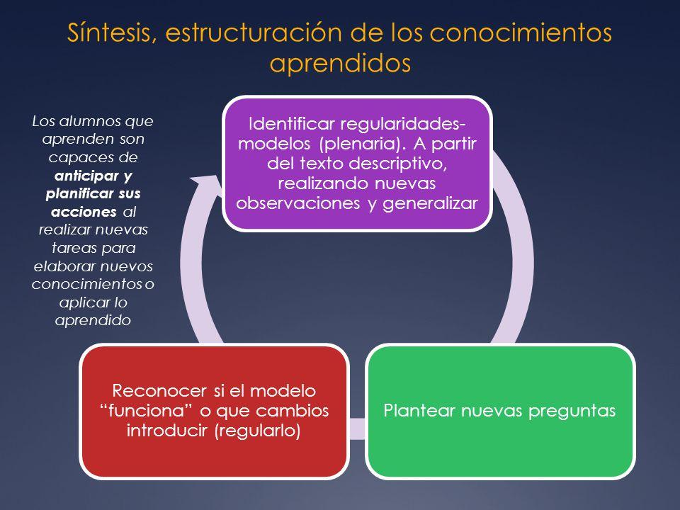 Síntesis, estructuración de los conocimientos aprendidos