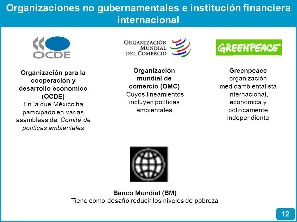 Organizaciones no gubernamentales e institución financiera internacional