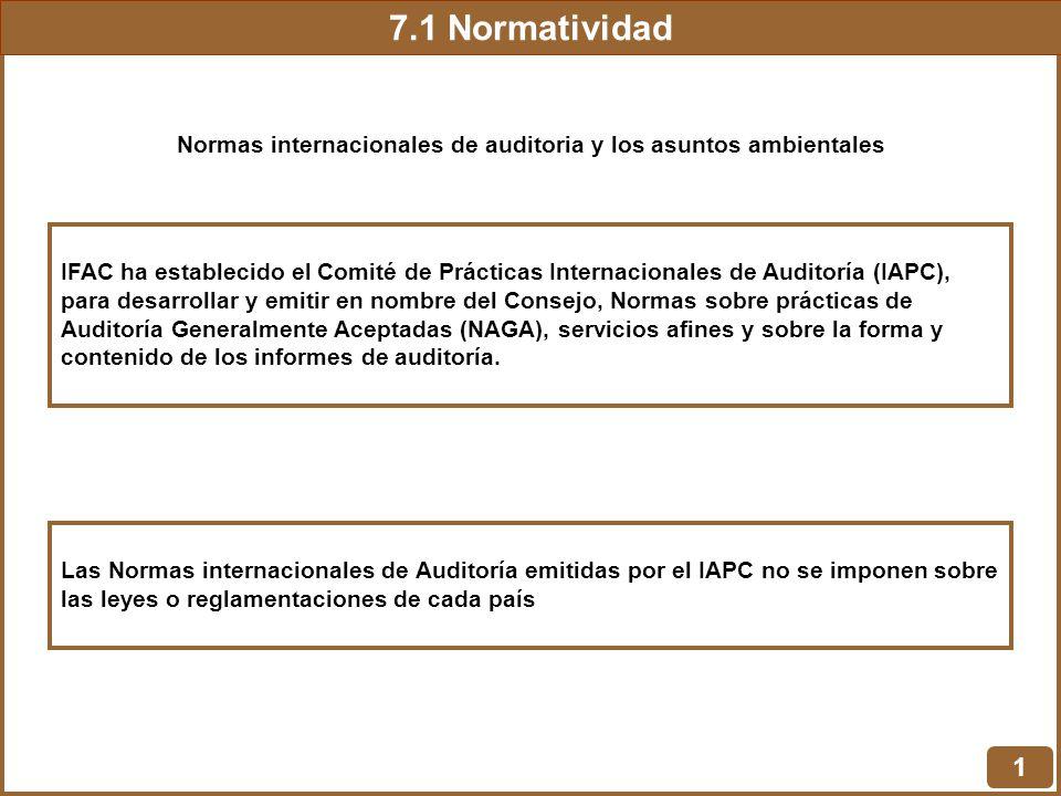 Normas internacionales de auditoria y los asuntos ambientales
