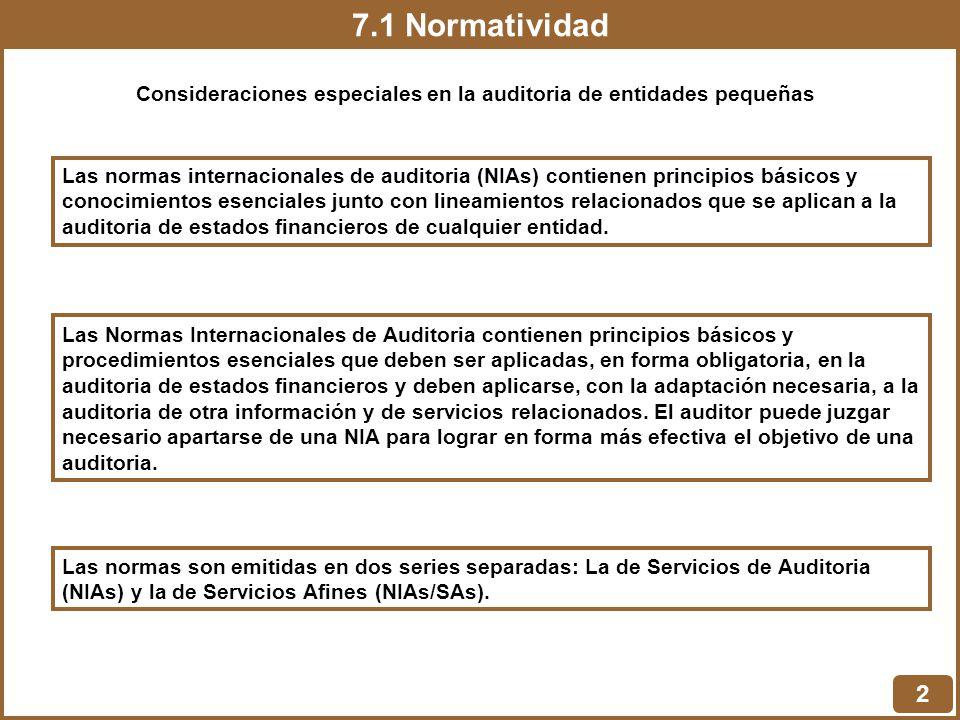 Consideraciones especiales en la auditoria de entidades pequeñas
