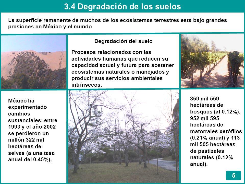 3.4 Degradación de los suelos
