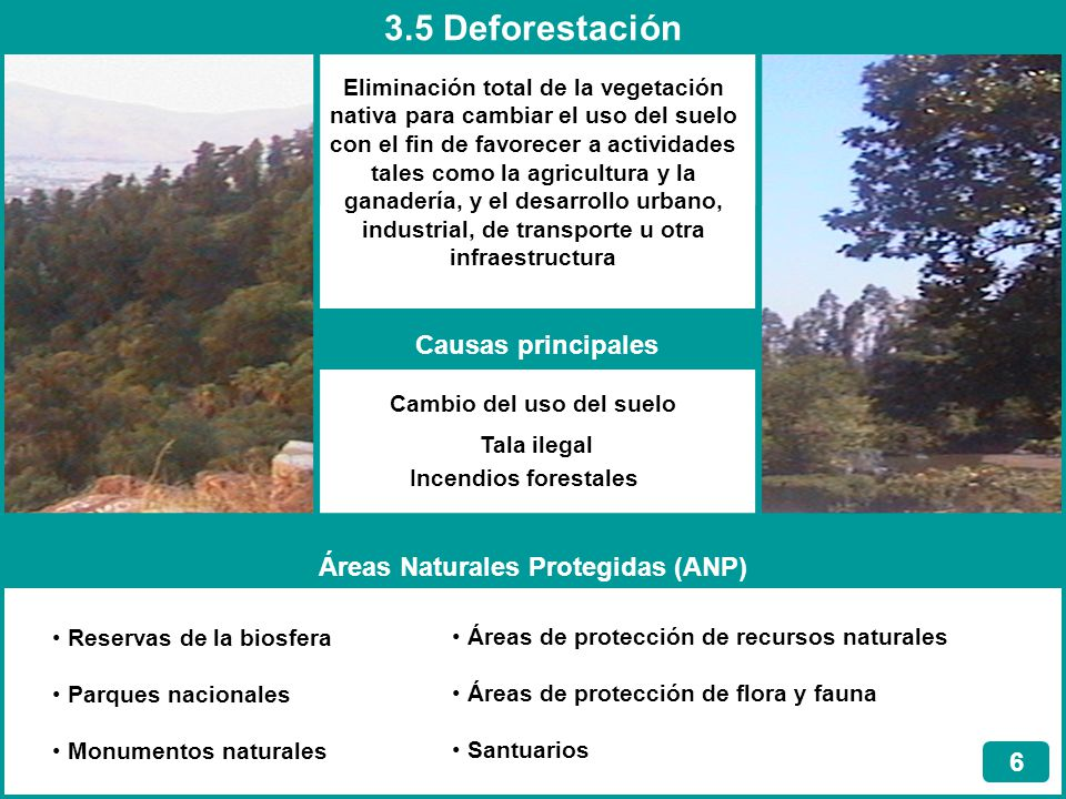 Áreas Naturales Protegidas (ANP)