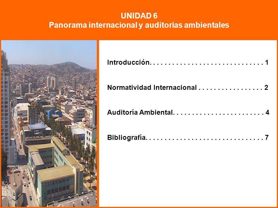 Panorama internacional y auditorías ambientales