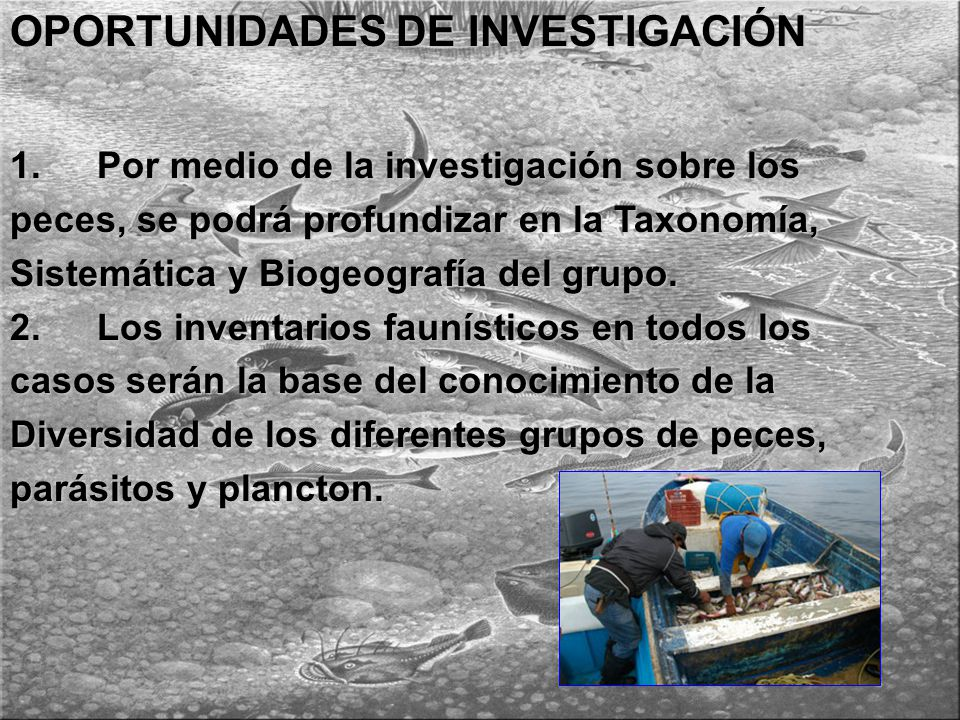 OPORTUNIDADES DE INVESTIGACIÓN