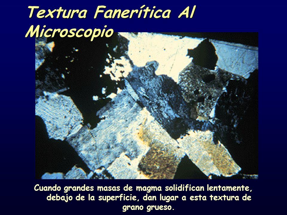Textura Fanerítica Al Microscopio