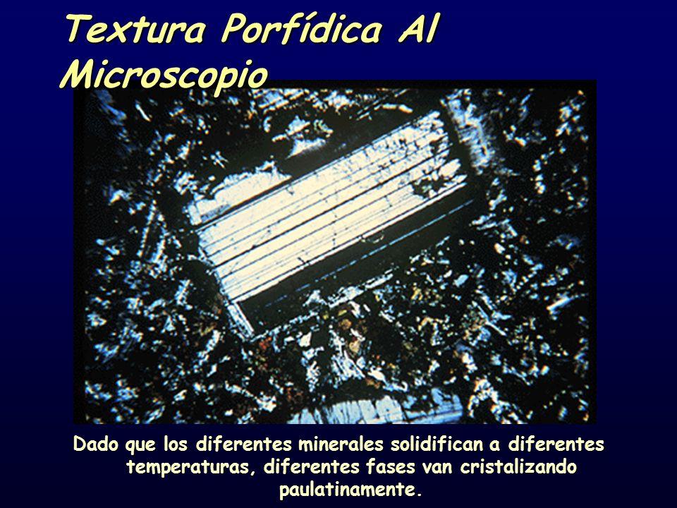 Textura Porfídica Al Microscopio