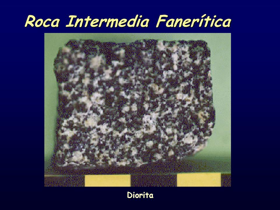 Roca Intermedia Fanerítica