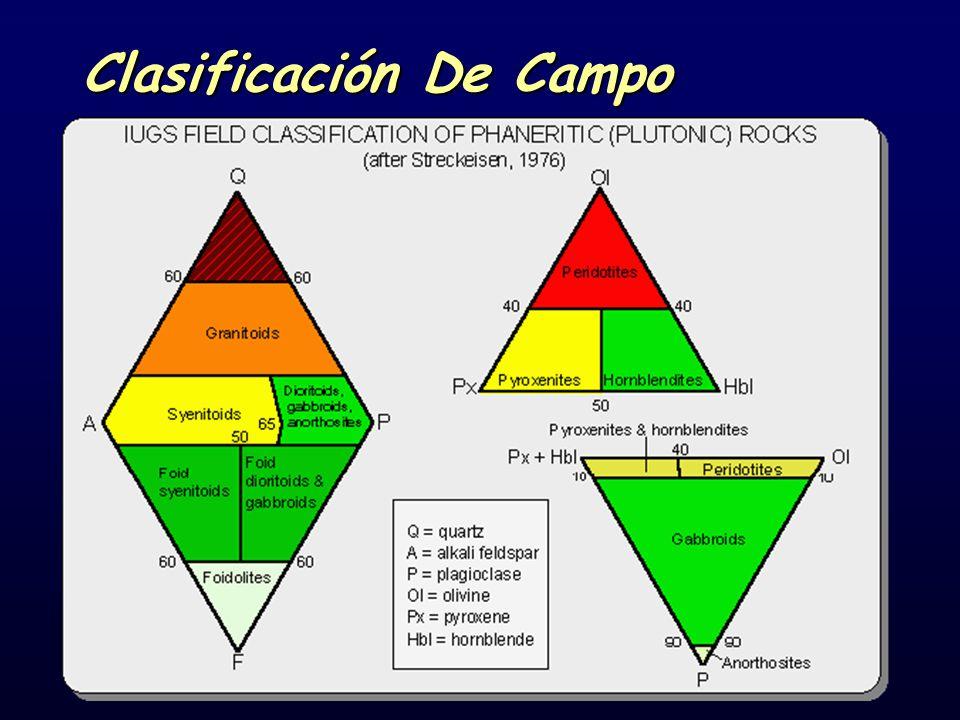 Clasificación De Campo