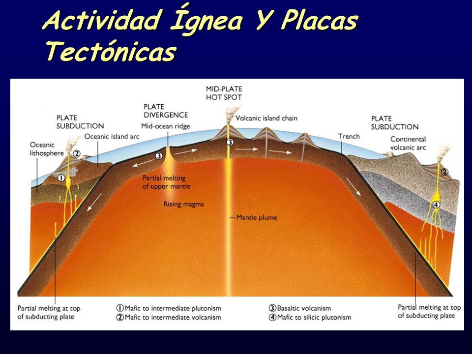 Actividad Ígnea Y Placas Tectónicas