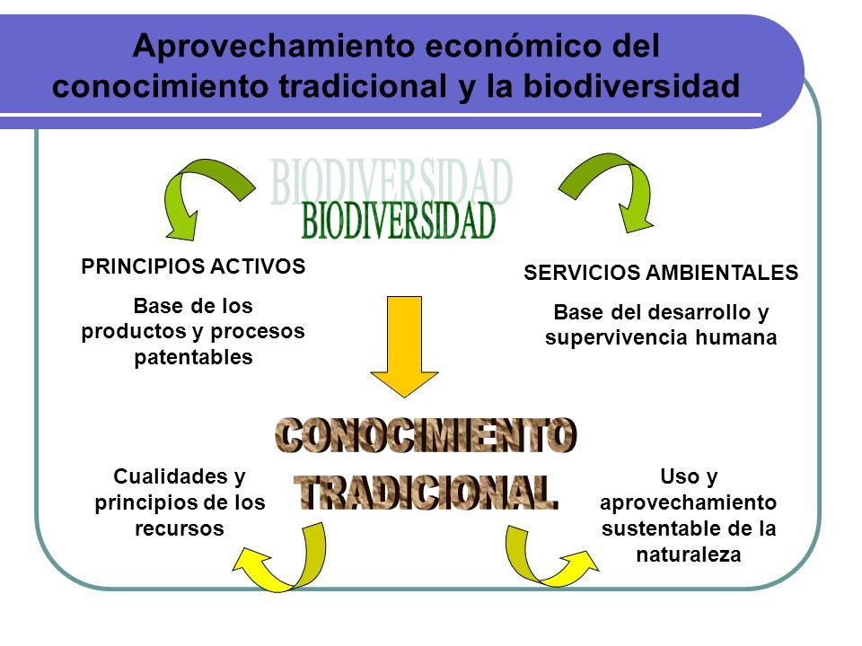 Aprovechamiento económico del conocimiento tradicional y la biodiversidad