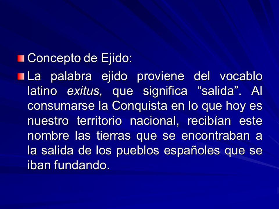 Concepto de Ejido: