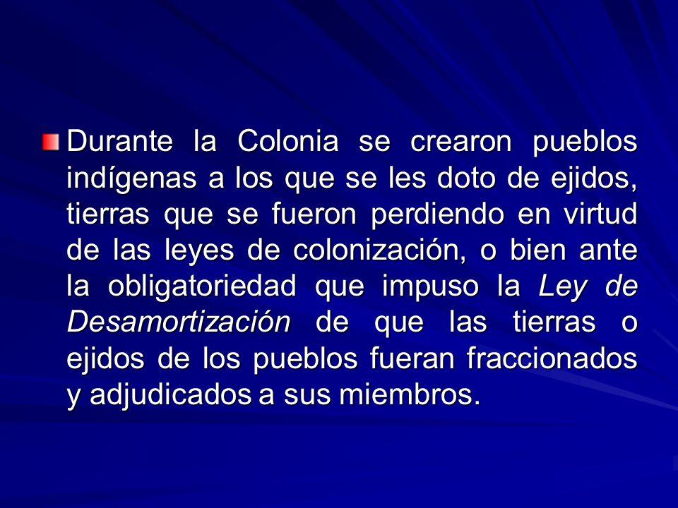 Durante la Colonia se crearon pueblos indígenas a los que se les doto de ejidos, tierras que se fueron perdiendo en virtud de las leyes de colonización, o bien ante la obligatoriedad que impuso la Ley de Desamortización de que las tierras o ejidos de los pueblos fueran fraccionados y adjudicados a sus miembros.