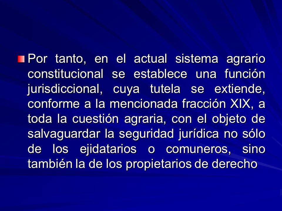 Por tanto, en el actual sistema agrario constitucional se establece una función jurisdiccional, cuya tutela se extiende, conforme a la mencionada fracción XIX, a toda la cuestión agraria, con el objeto de salvaguardar la seguridad jurídica no sólo de los ejidatarios o comuneros, sino también la de los propietarios de derecho