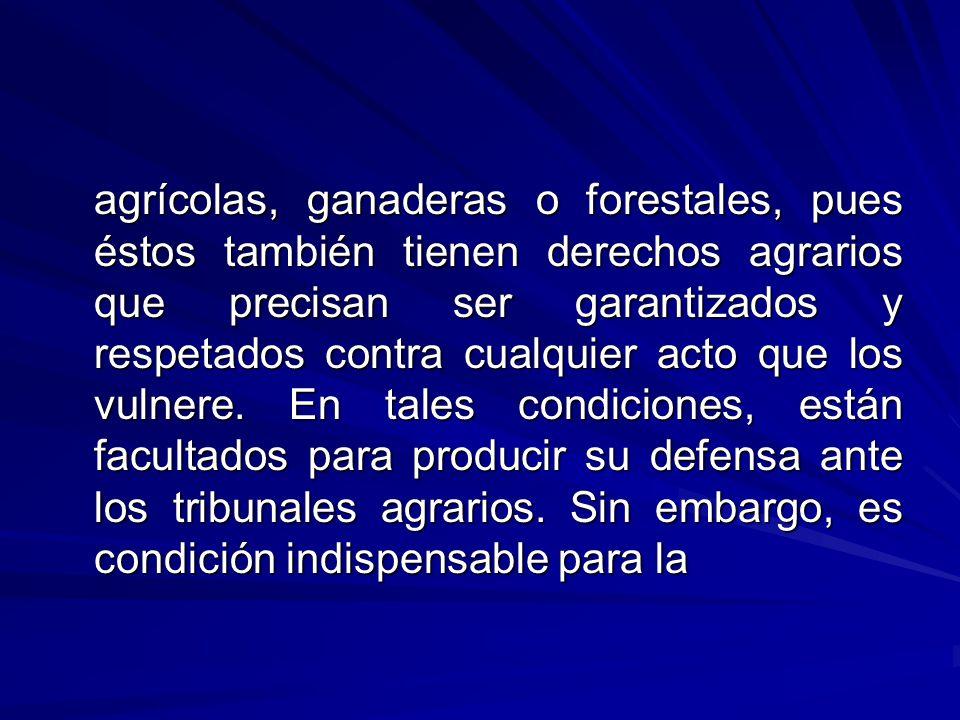 agrícolas, ganaderas o forestales, pues éstos también tienen derechos agrarios que precisan ser garantizados y respetados contra cualquier acto que los vulnere.