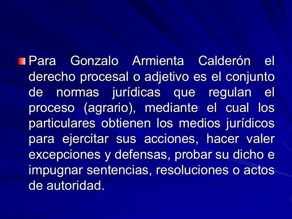 Para Gonzalo Armienta Calderón el derecho procesal o adjetivo es el conjunto de normas jurídicas que regulan el proceso (agrario), mediante el cual los particulares obtienen los medios jurídicos para ejercitar sus acciones, hacer valer excepciones y defensas, probar su dicho e impugnar sentencias, resoluciones o actos de autoridad.